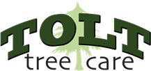 Tolt Tree Care